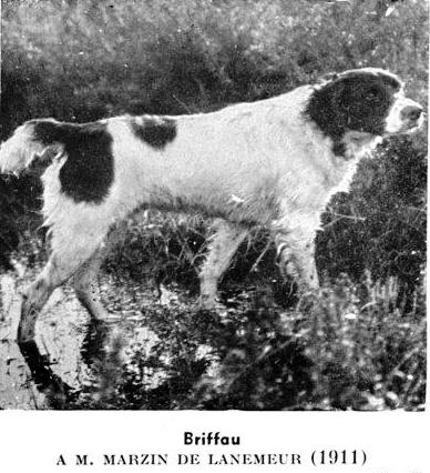 Briffau 1911