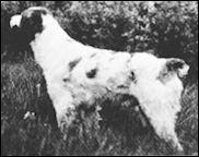 Brit of Bellows Falls 1945
