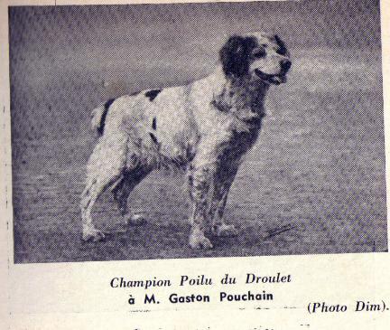 Poilu Du Droulet c.1935